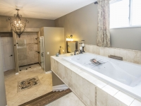Owner's Bath_1