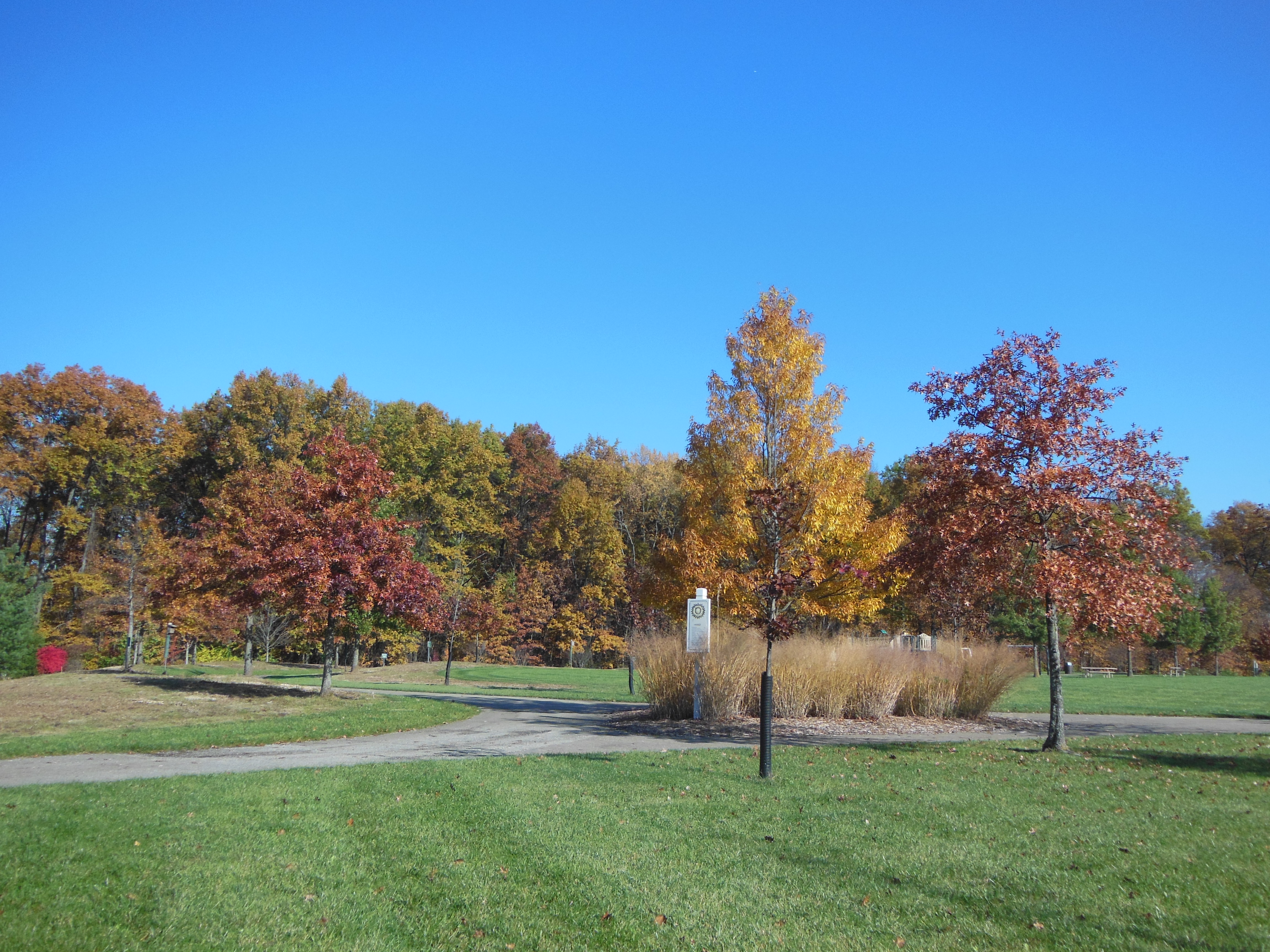 Meadow View Park w/access off Wooten Ct. S