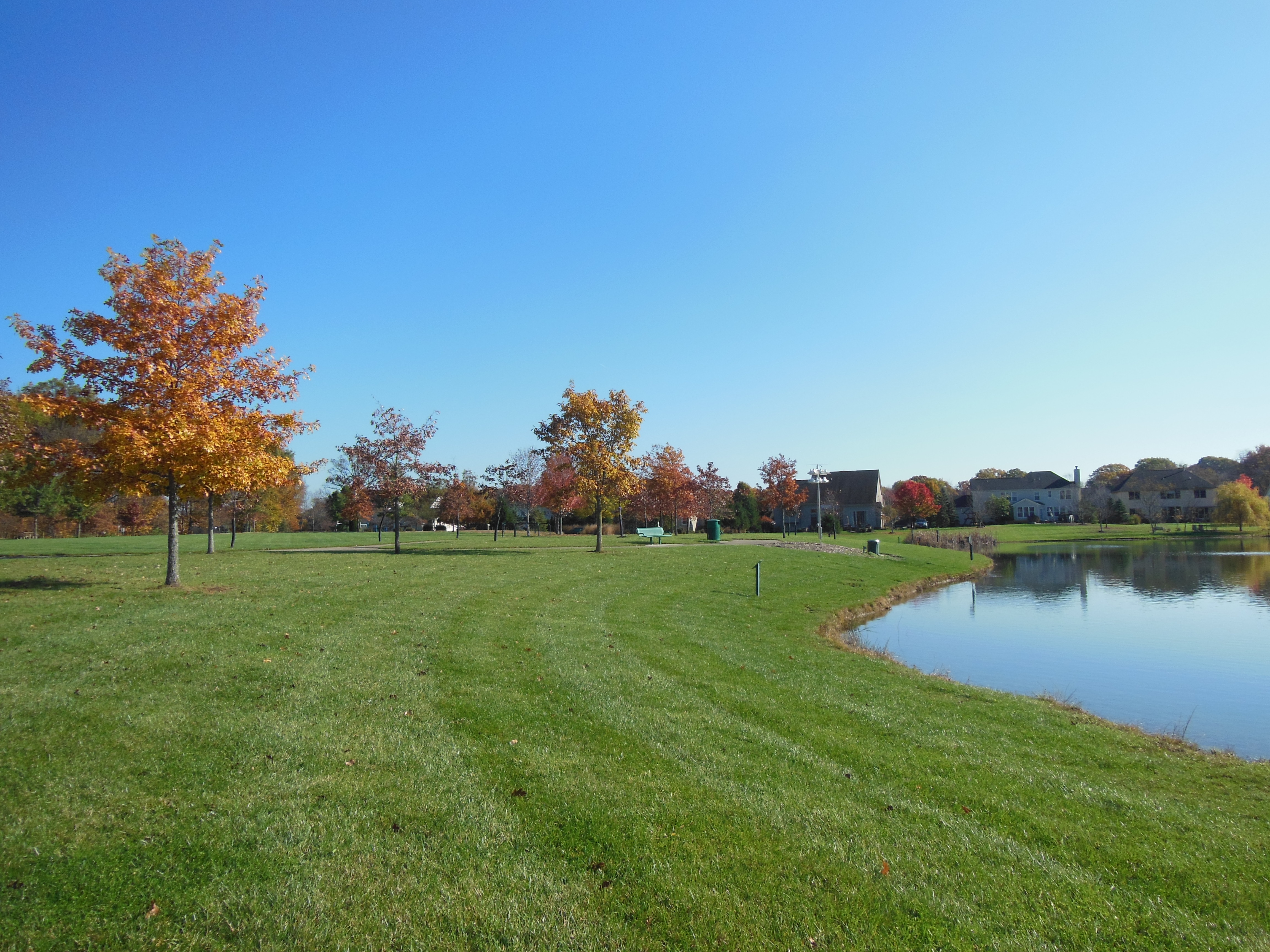 Just imagine this park within 5 minutes of your home